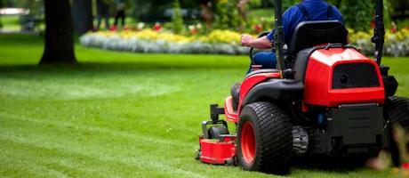 Gardener in the park